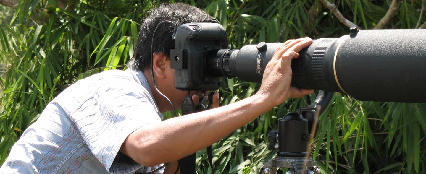 Bird & Wildlife Photography Tour in India